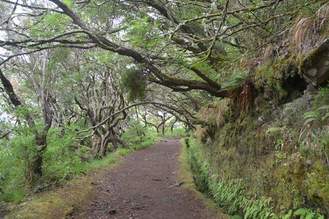 Wandelen 25 fontes - Madeira bezienswaardigheden