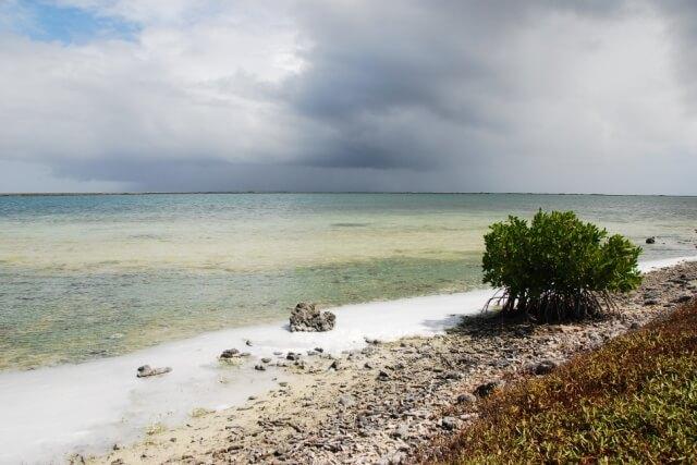 Pekelmeer Bonaire