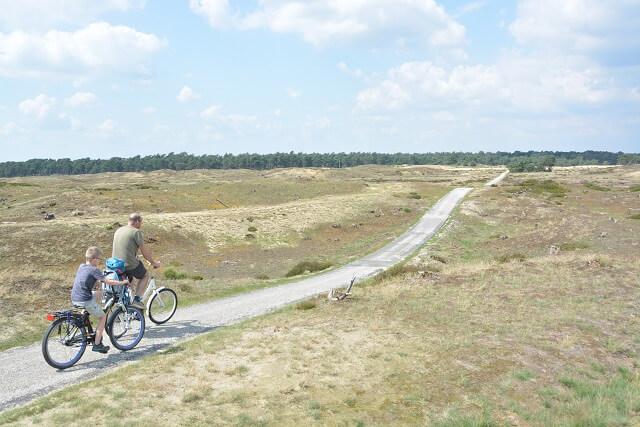 Mooiste natuur Nederland - Nationaal Park Hoge Veluwe