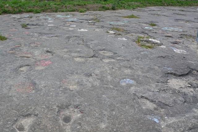 Dinosaurussporen, Jura, Frankrijk