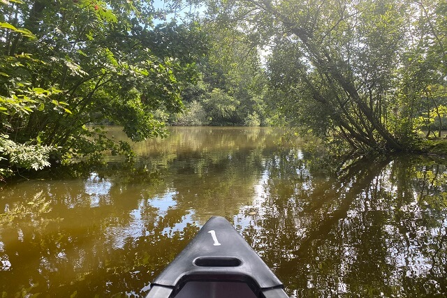 Mooiste kanotochten Nederland - kanovaren veengebieden