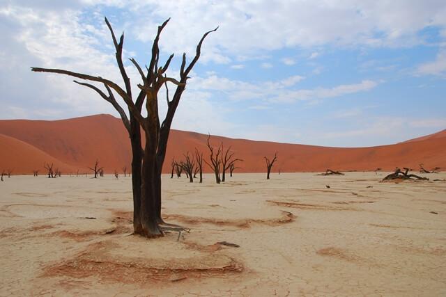 Deadvlei - Sossusvlei Namibië