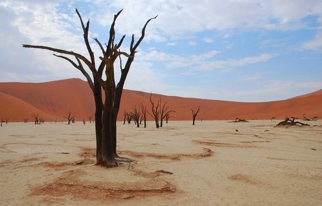 Deadvlei, Namibie