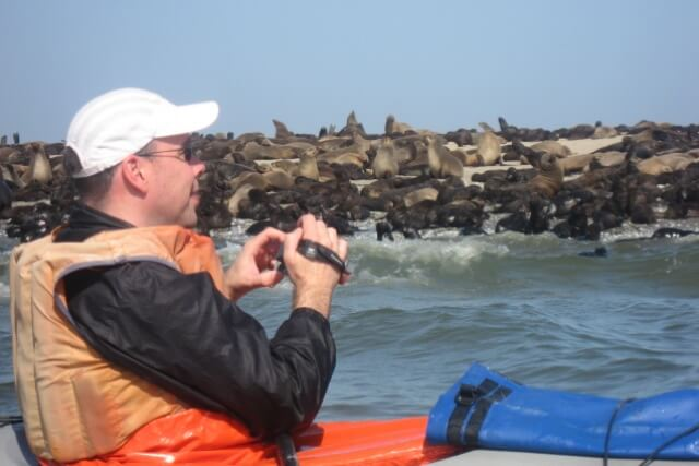 Met de kajak bij de zeehonden, Eco Marine Kayak Tours, Walvisbaai, Namibie